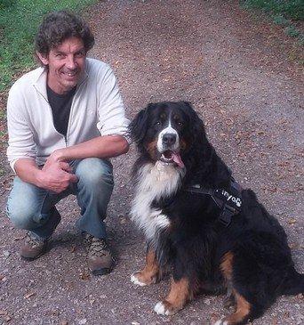 Hundeversicherung kosten