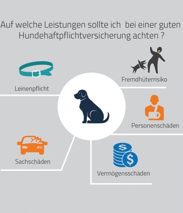 Hundehaftpflicht Leistungen
