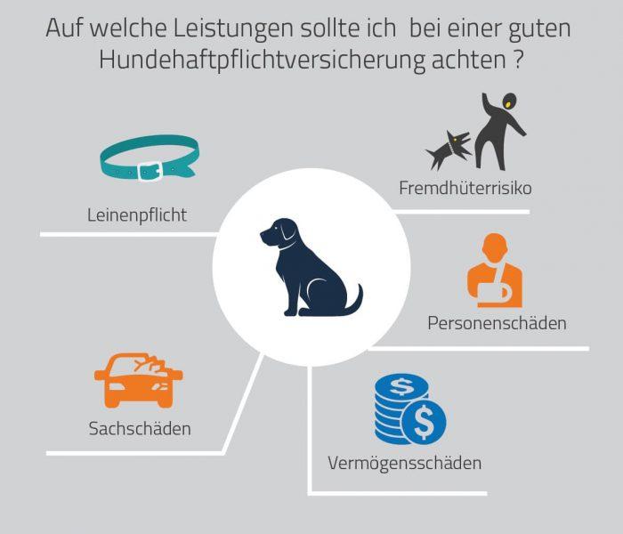 Hundehaftpflicht Huk Die Huk Hundehaftpflicht Im Test Vergleich