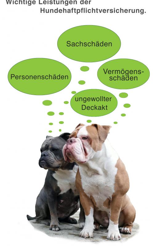 Hundehaftpflicht Leistung